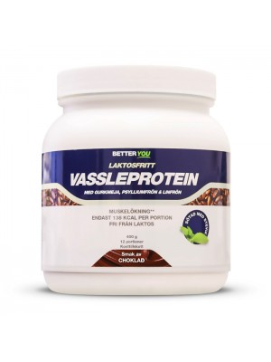 Laktosfria Vassle Protein